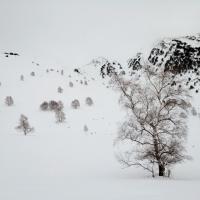 Flash de neu 2015 - Lluisa Serra 02